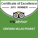 The Certificate of Excellence award 2013